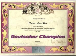 nemecky-klubovy-sampion--vk-.jpg