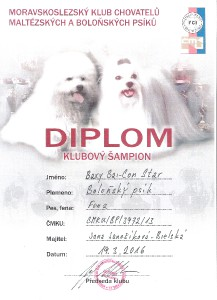 baxy-klubovy-sampion.jpg
