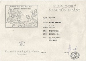 baira---slovensky-sampion-krasy.jpg